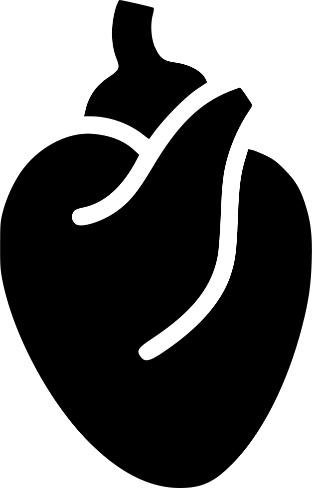 Heart Heart Muscle Blood System Body Anatomy Svg Png Icon Free