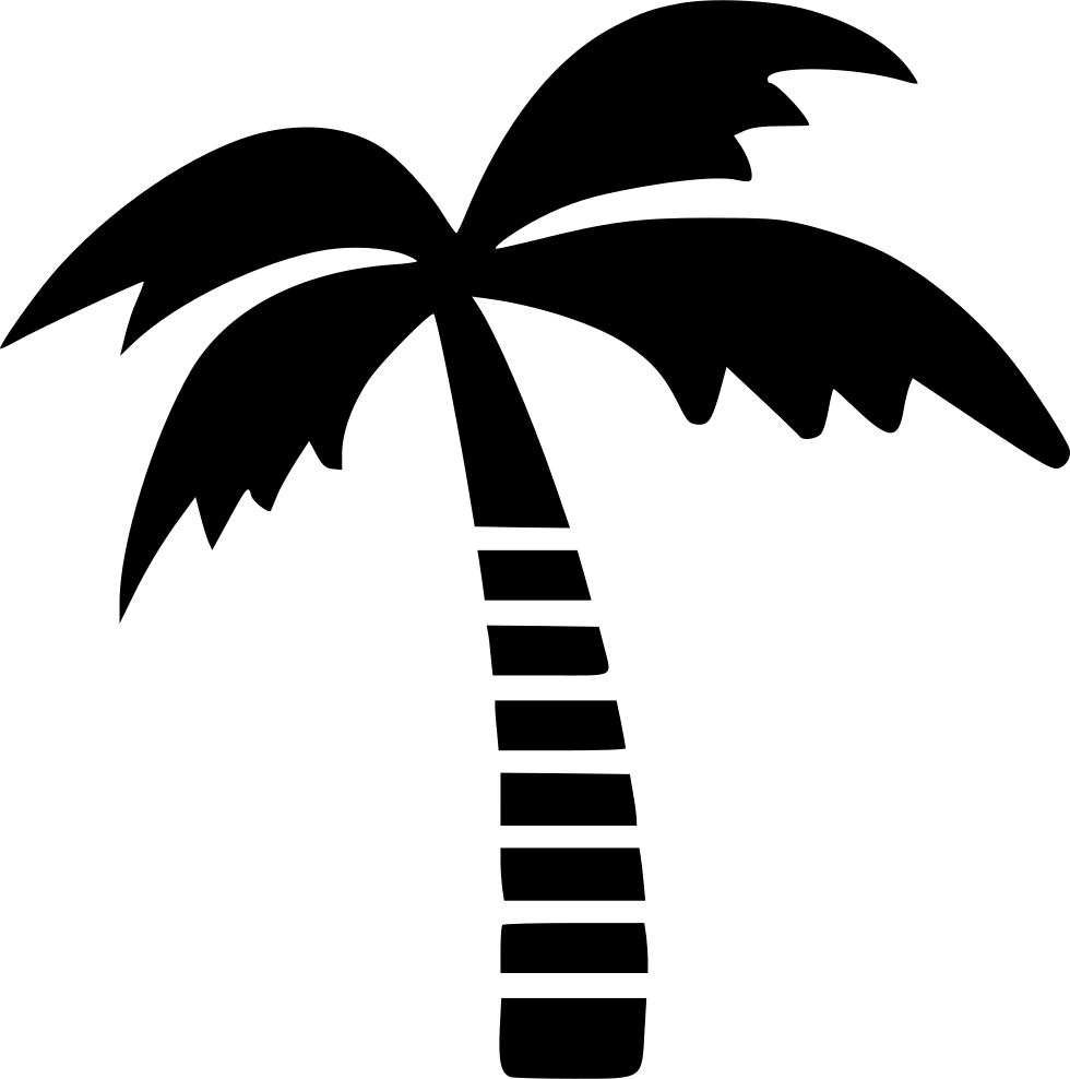 Coconut Tree Svg Png Icon Free Download (#499417 ...