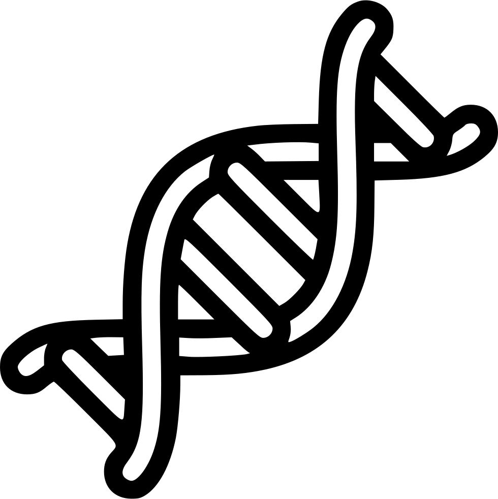 Dna Helix Rna Svg Png Icon Free Download (#535039 ...