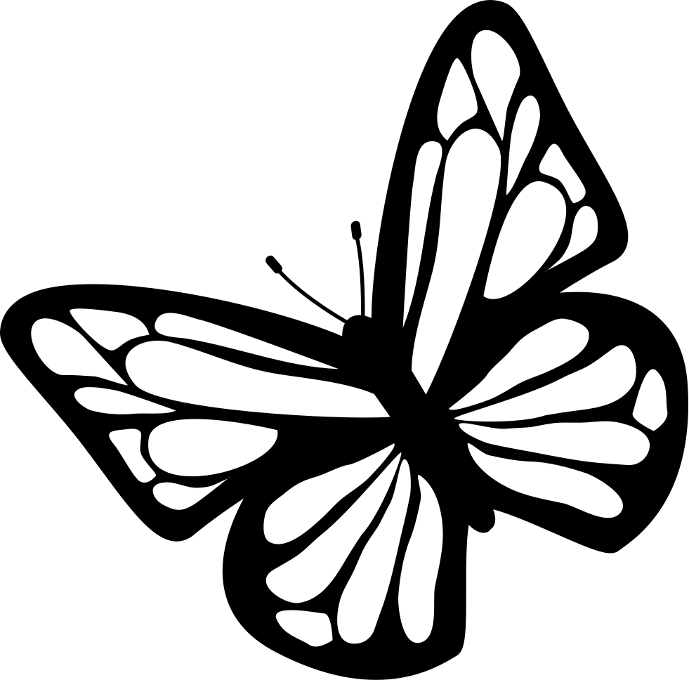 butterfly top view svg png icon free download 74584