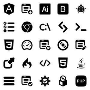 Programming Developer