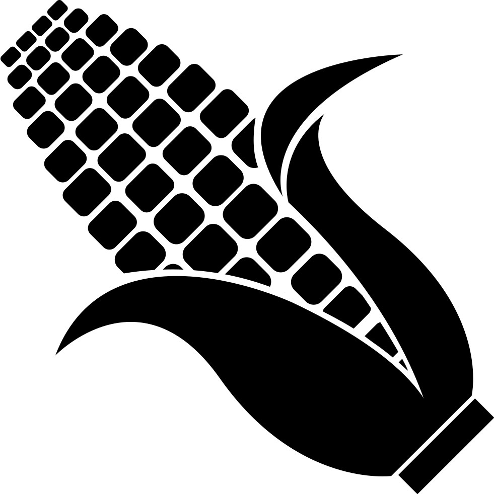 Corn Svg Png Icon Free Download (#271014) - OnlineWebFonts.COM