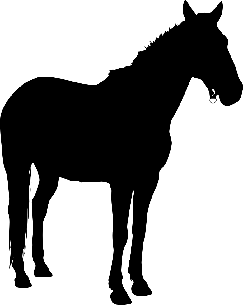 Horse Standing Black Silhouette Facing Right