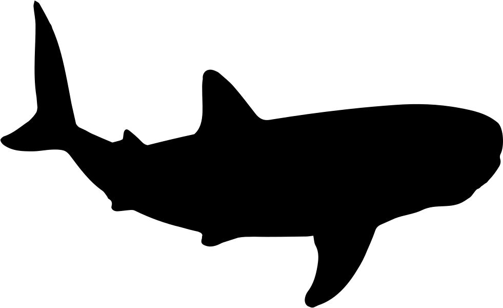 Whale Shark Shape