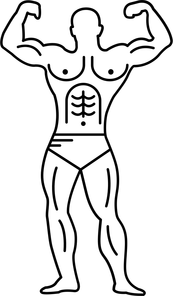 Muscular Outline Of A Bodybuilder Flexing