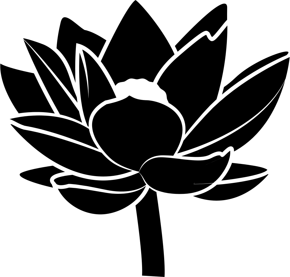 Flower Ornament Svg Png Icon Free Download 39480