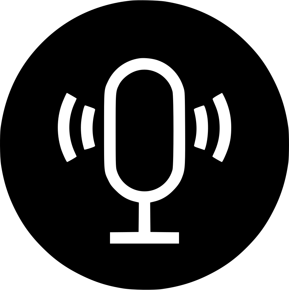 Recording Speech Recognization Voice Recorder Input