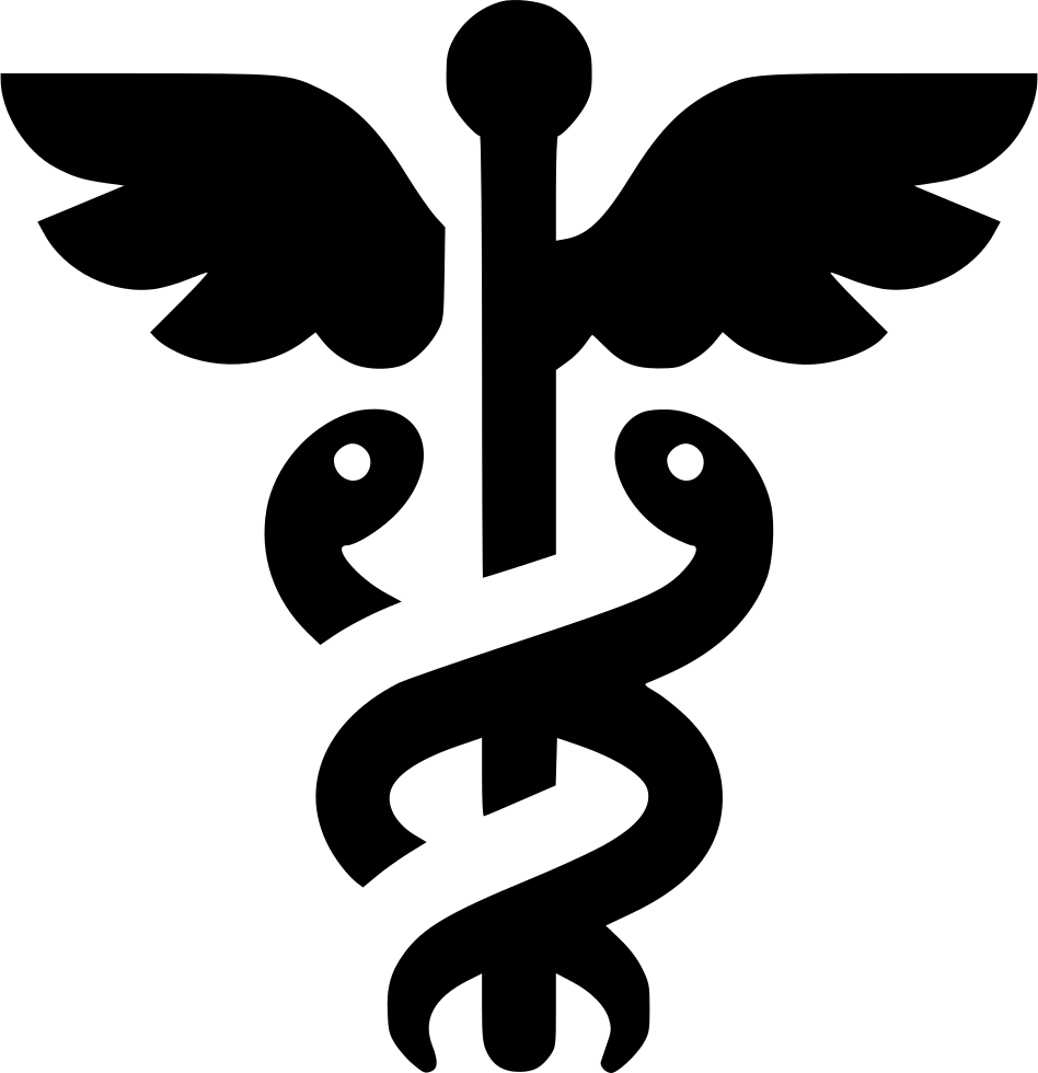 Caduceus Mercury Snake Wings