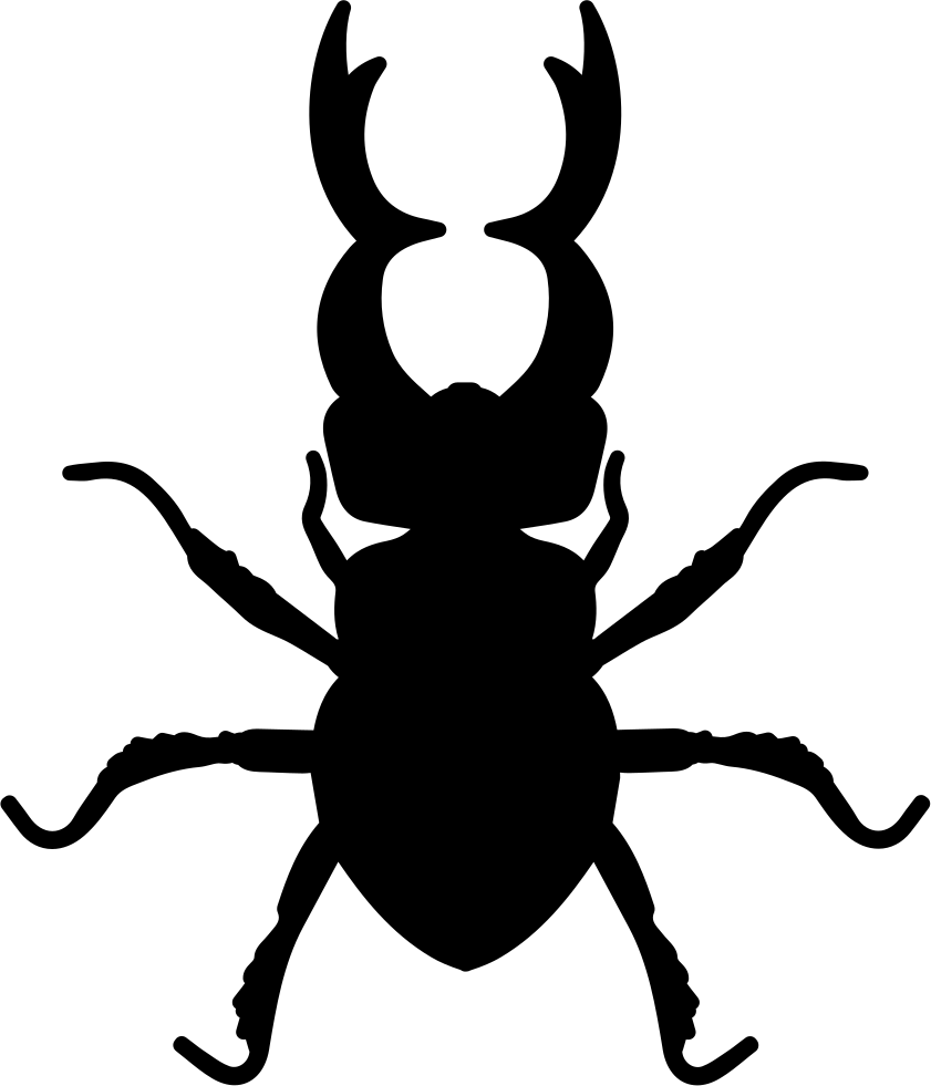 Stag Beetle Insect Animal Shape