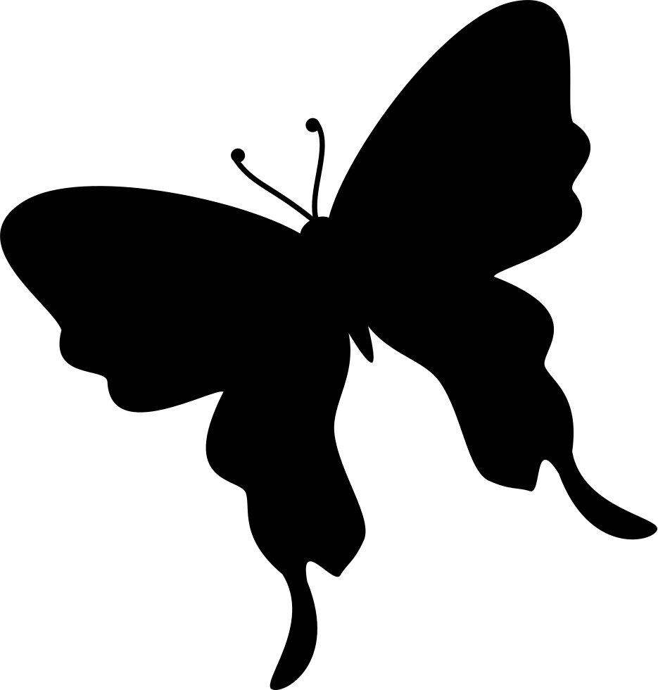 Butterfly Black Silhouette Shape From Top View Rotated To Left