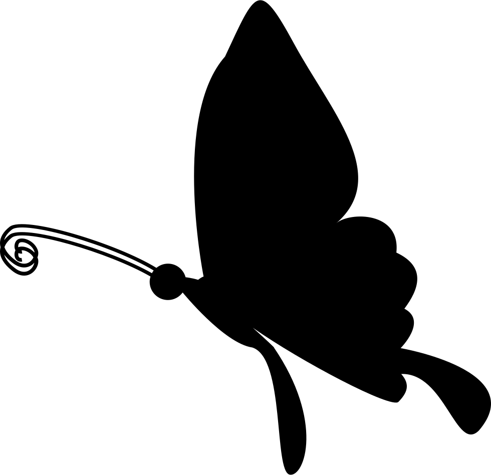 Black Butterfly Shape From Side View