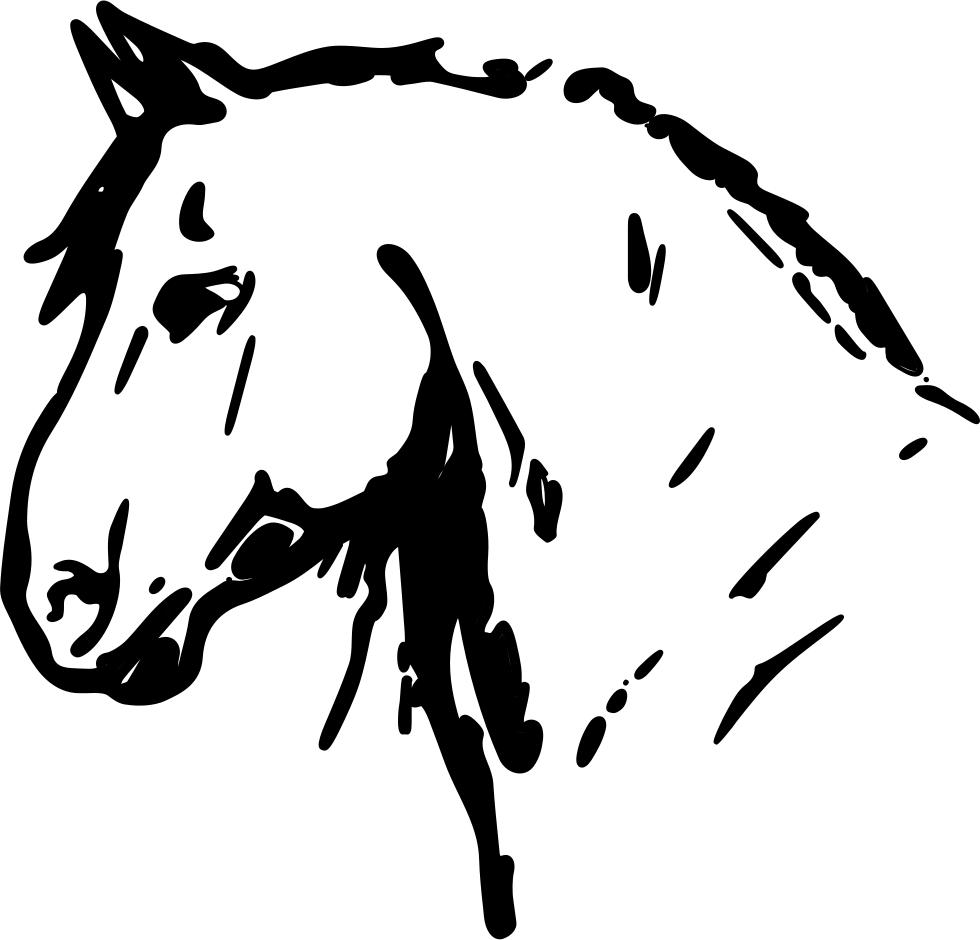 Horse Head Drawing Facing The Left Direction