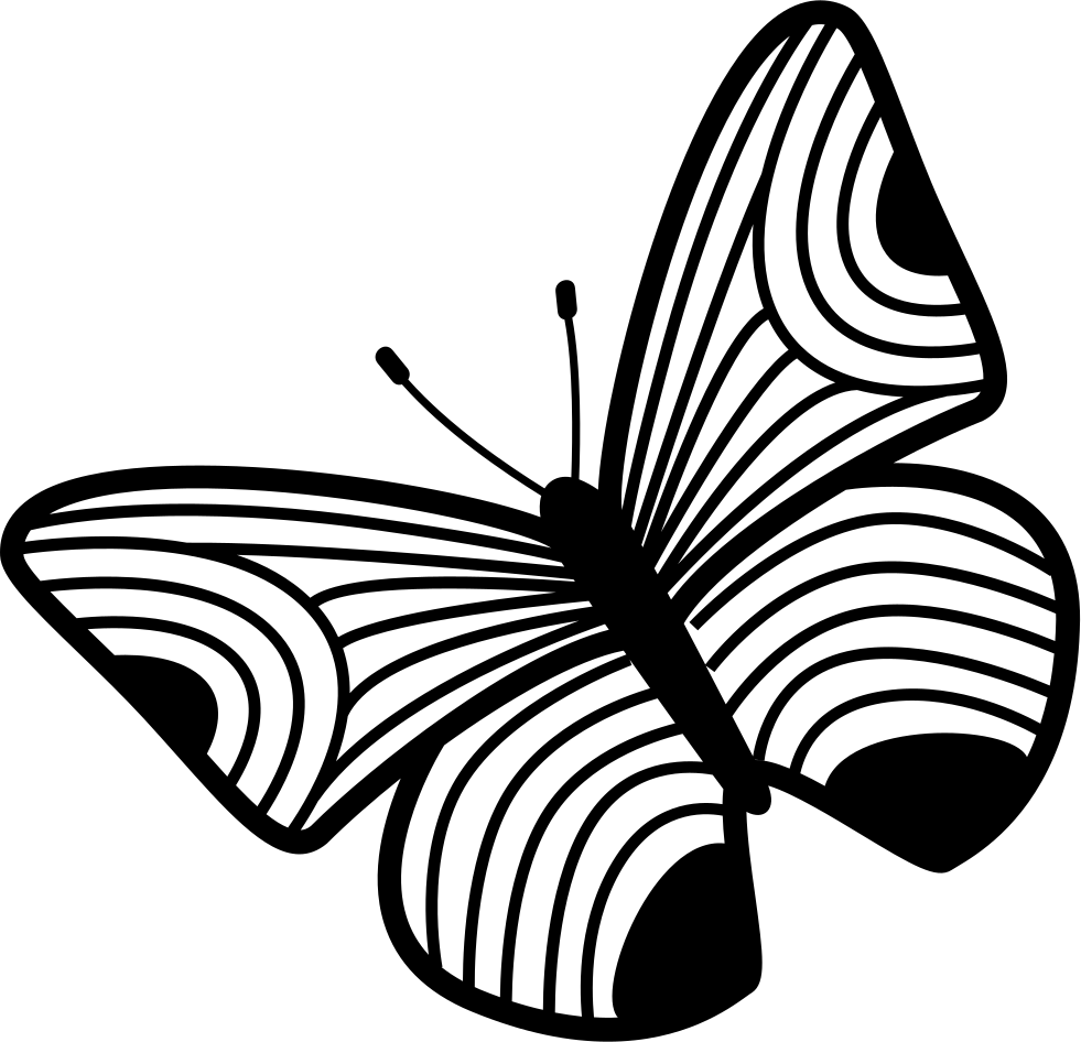 Butterfly Design Of Thin Stripes Wings