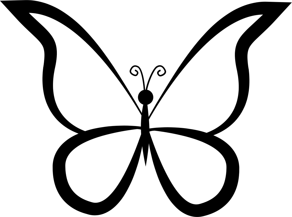 Butterfly Outline Design From Top View
