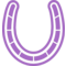 Horseshoe Variant