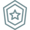 Shield Badge Star Reward Award Honor Achievement