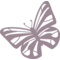 Butterfly Variant